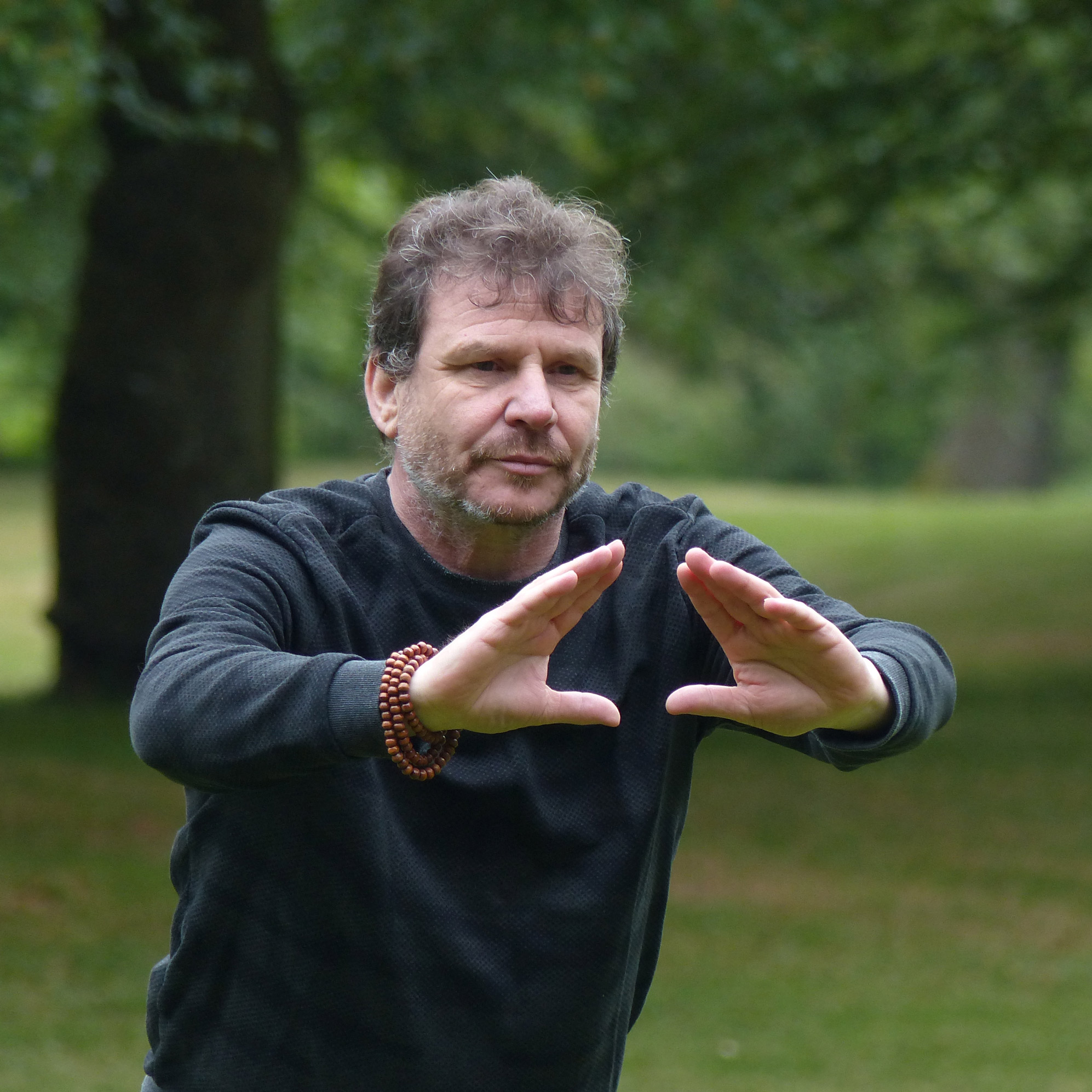 Ron Wiggers qigong docent instructeur instructor