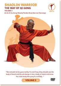 shaolin warrior vol 3 the way of qigong